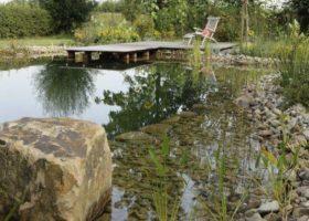 natürlicher Schwimmteich in Herzebrock-Clarholz