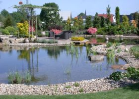 Großzügige Teichlandschaft mit Schwimmmöglichkeit in Münster