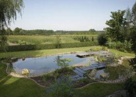Perfekt in die Natur integrierter Schwimmteich im Kreis Gütersloh