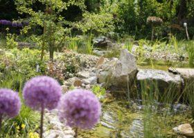 Wasserlauf natürlich integriert in einer harmonischen Pflanzung