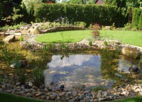 der Regenerationsbereich sorgt für klares Wasser und biologisches Gleichgewicht