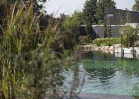 Privates Badeparadies mit glasklarem Wasser ohne Chlor