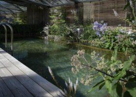 Schau-Schwimmteich bei Senger Gartendesign in Ostenfelde