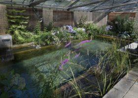 Schwimmteich bei Senger Gartendesign in Ostenfelde