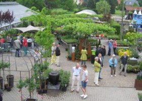 Gartendesigntag 2013
