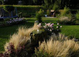 Grün im Garten