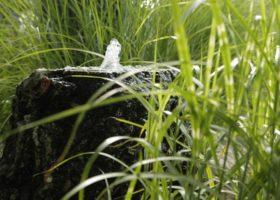 Wasserspiel aus Naturstein