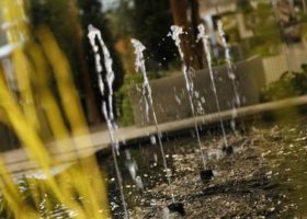 filigranes Wasserspiel von Oase