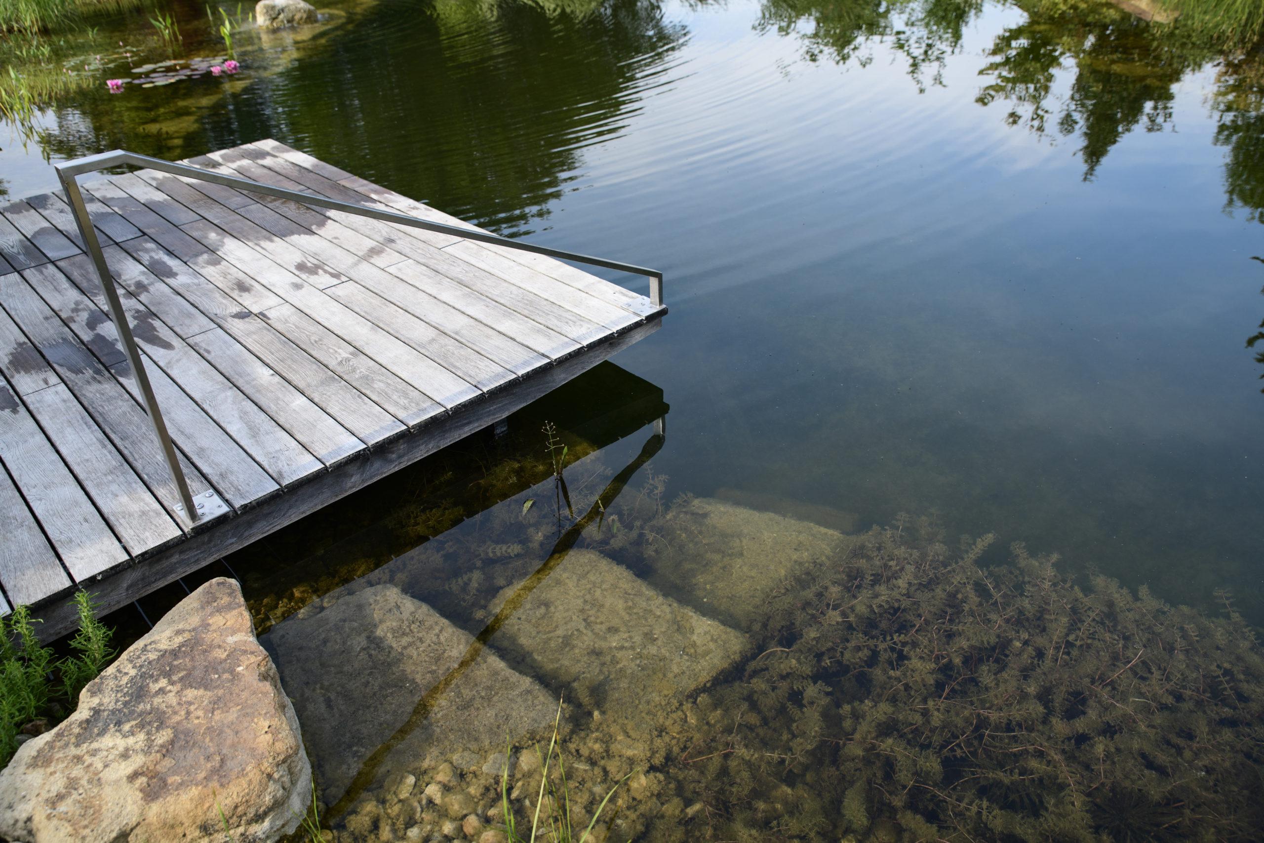 bequemer Einsteig über Treppenstufen in den Schwimmteich
